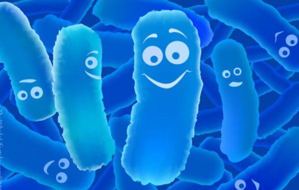 Men tiêu hóa là hỗn hợp các enzym khác nhau do chính cơ thể bài tiết ra